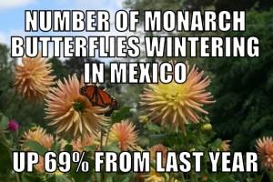 monarch1-27-15