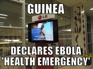 guinea3-28-15