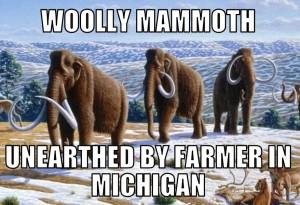 woolly10-3-15
