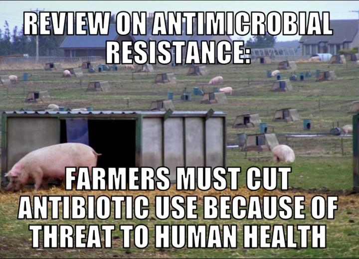 antibio12-8-15