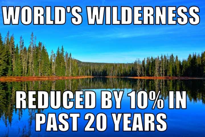 wilder9-9-16